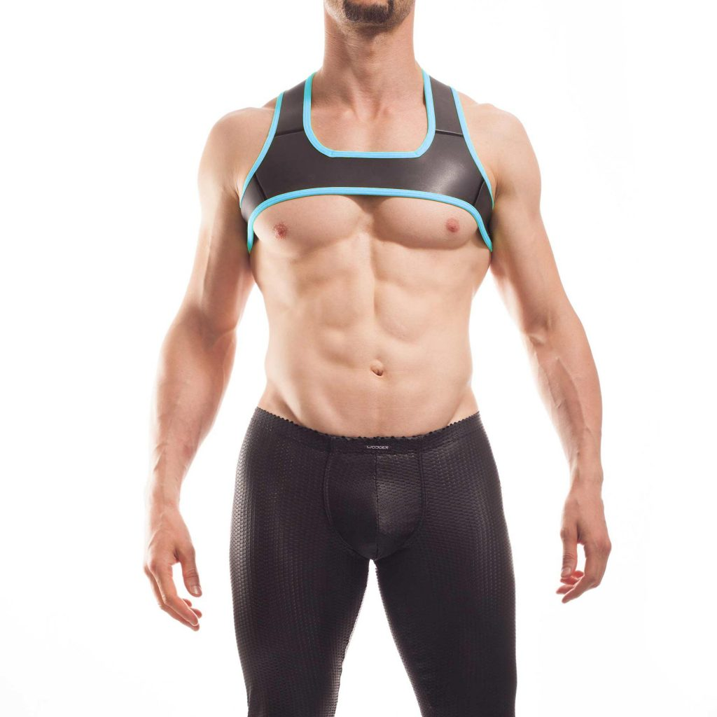 Wojoer Harness,Harnes, Brustgeschirr, Brustbänder Mann, Brustgurt, minitop, eis blau